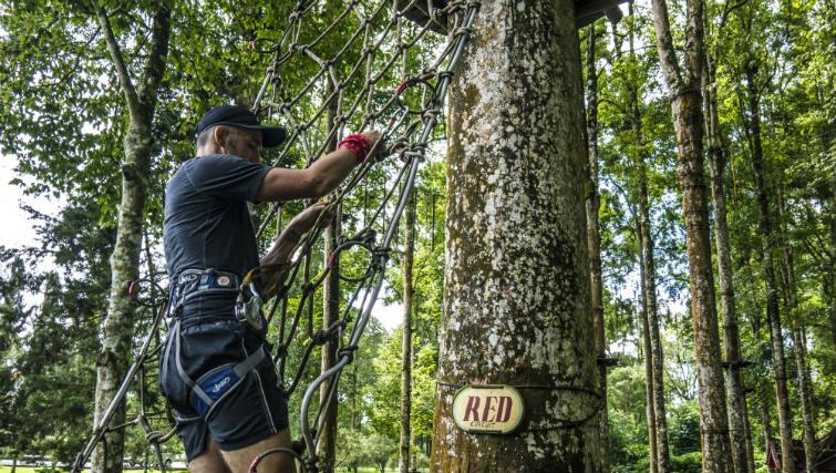 Treetop fitness