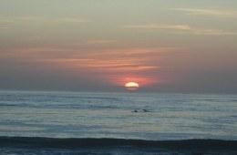 bali beach read