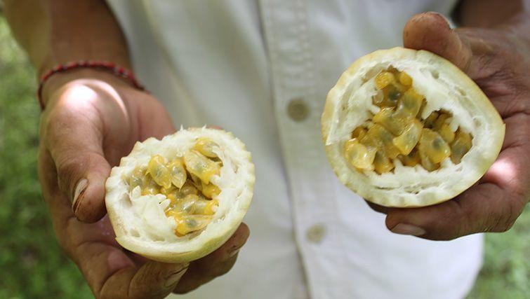 Slow food in Bali