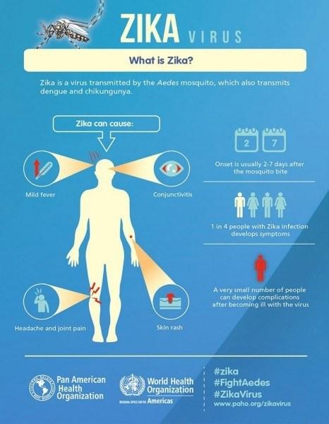 zika virus warning signs in airport